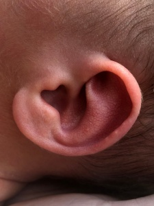 heart ear